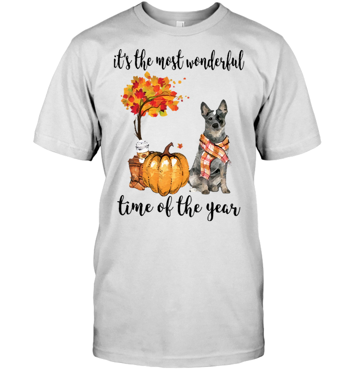 Fall Pumpkin It's The Most Wonderful Time Of The Year Australian Cattle T Shirt
