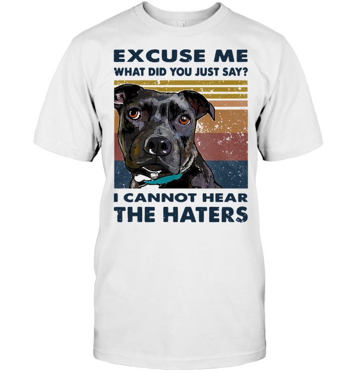 Pitbull Excuse Me What Did You Just Say I Cannot Hear The Haters Vintage T Shirt